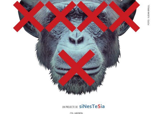 SINESTESIA | El Venadito 4ªed.